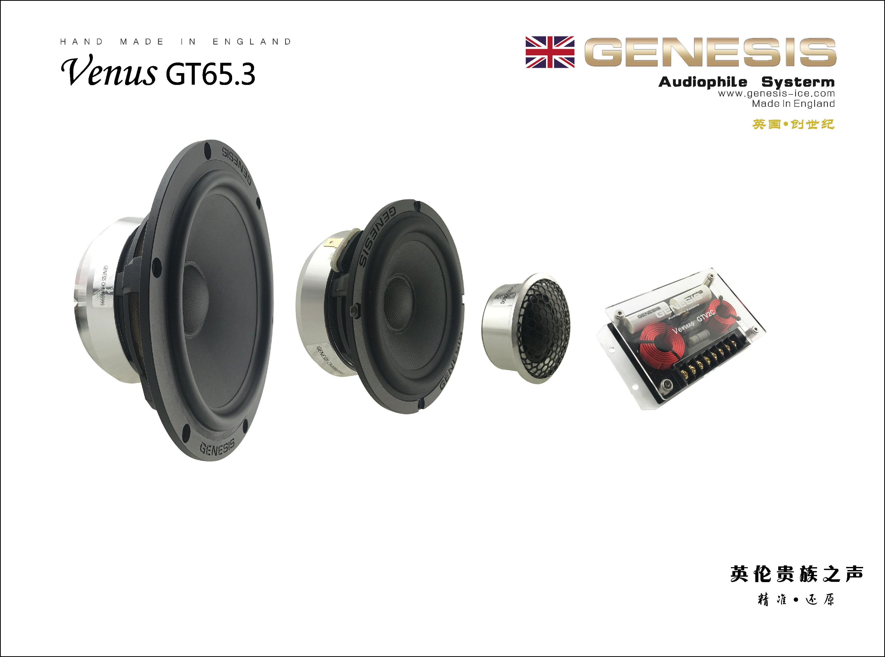 Venus GT65.3